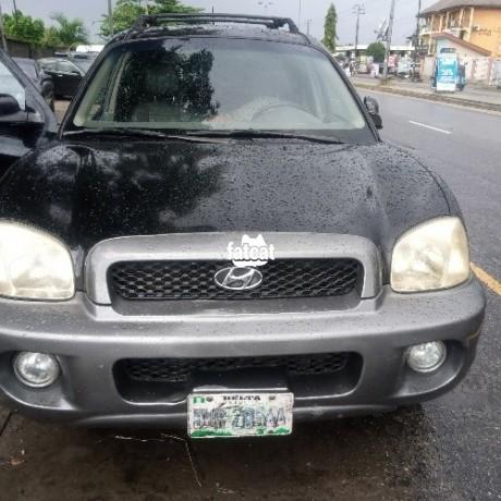 Classified Ads In Nigeria, Best Post Free Ads - used-hyundai-santa-fe-2004-in-warri-delta-for-sale-big-0