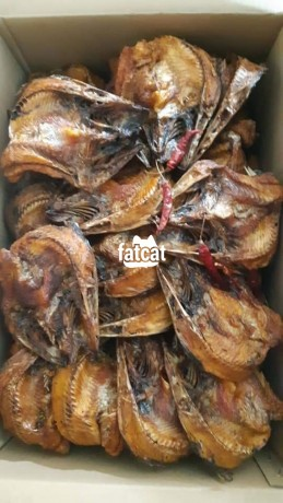 Classified Ads In Nigeria, Best Post Free Ads - imported-thailand-fishes-in-lagos-for-sale-big-1