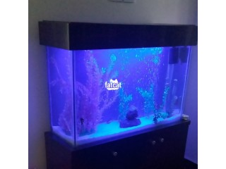 Aquarium in Abuja, FCT for Sale