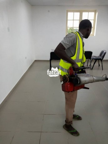 Classified Ads In Nigeria, Best Post Free Ads - fumigation-services-in-lekki-phase-1-lagos-big-1