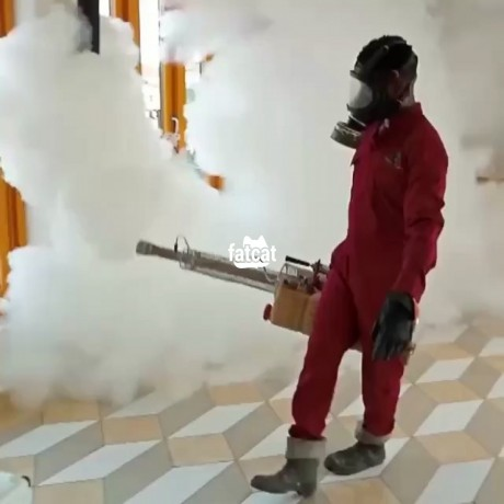 Classified Ads In Nigeria, Best Post Free Ads - fumigation-services-in-lekki-phase-1-lagos-big-0