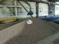 animal-feeds-production-training-in-ikeja-lagos-small-0