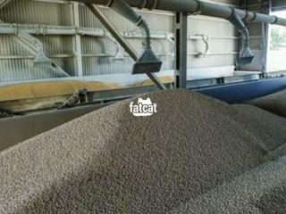 Animal Feeds Production Training