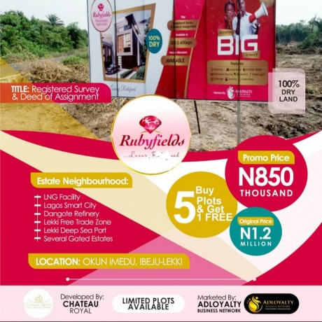 Classified Ads In Nigeria, Best Post Free Ads - plots-of-land-for-sale-in-ibeju-lekki-lagos-big-0
