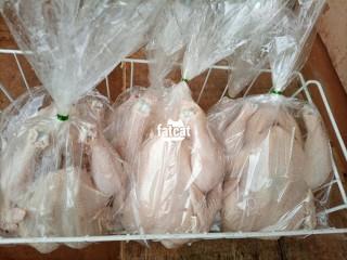 AgriBest Fresh and Frozen Chicken