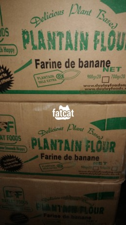 Classified Ads In Nigeria, Best Post Free Ads - 700g-plantain-flour-in-ikeja-lagos-for-sale-big-1