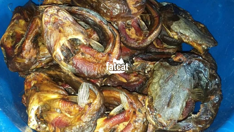 Classified Ads In Nigeria, Best Post Free Ads - smoked-and-fresh-fish-in-ipaja-lagos-for-sale-big-3
