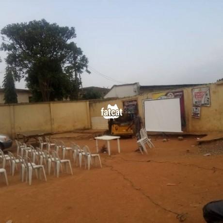 Classified Ads In Nigeria, Best Post Free Ads - projectors-rental-in-ajah-lagos-big-0