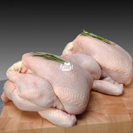 Classified Ads In Nigeria, Best Post Free Ads - frozen-chicken-in-benin-city-edo-for-sale-big-3