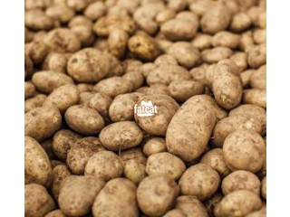 Irish Potatoes in Ikeja, Lagos for Sale