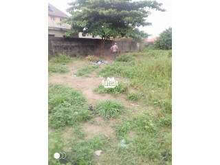 Plots of Land with C of O in Ikotun/Igando, Lagos for Sale