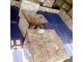 bed-frame-in-karmo-abuja-for-sale-small-3