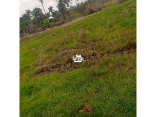 Plots of Land in Ede, Osun State for Sale