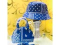 ladies-design-handbags-with-cover-cap-small-2