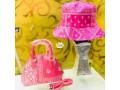 ladies-design-handbags-with-cover-cap-small-3