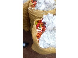 Fresh Farm Pepper in Abaji, (Abuja) FCT for Sale