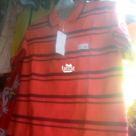 Classified Ads In Nigeria, Best Post Free Ads - quality-cotton-polo-big-0