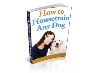 Learn How To House-train Any Dog