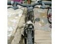kids-bicycles-small-2