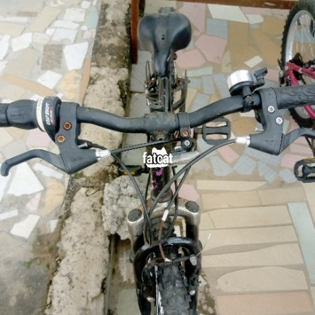Classified Ads In Nigeria, Best Post Free Ads - kids-bicycles-big-3