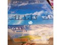 orl-giant-60-ceiling-fan-small-1