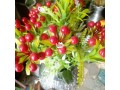 table-flower-small-1