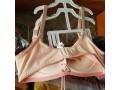 brassiere-bra-small-1