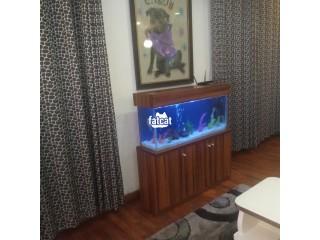 Lovely Standing Aquarium