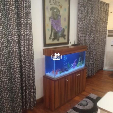 Classified Ads In Nigeria, Best Post Free Ads - lovely-standing-aquarium-big-3