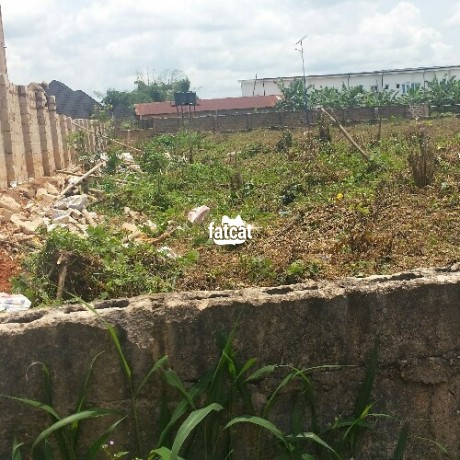 Classified Ads In Nigeria, Best Post Free Ads - 100ft-by-200ft-plot-of-land-in-benin-city-edo-for-sale-big-1