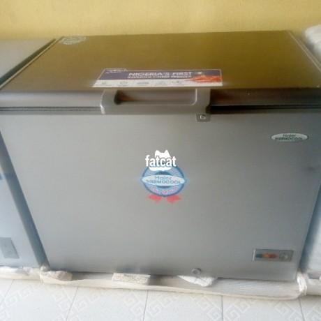 Classified Ads In Nigeria, Best Post Free Ads - deep-freezer-big-0