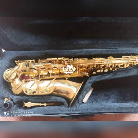 Classified Ads In Nigeria, Best Post Free Ads - premier-alto-saxophone-in-ikenne-ogun-for-sale-big-0